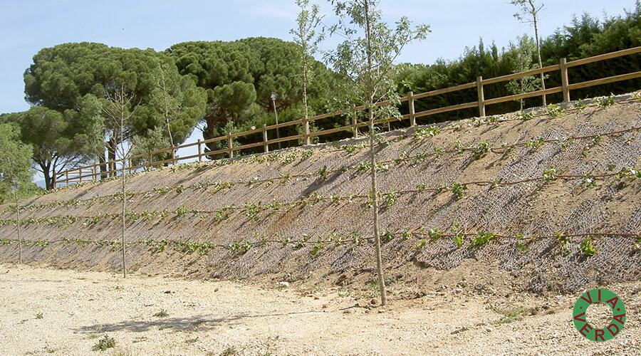 Ajuntament de Vilafant. Dipòsit d'aigua, solàrium, piscina